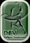 DTV Tennisverein Delligsen